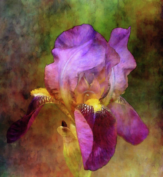 Photograph - Delicate Passion 0235 Idp_2 by Steven Ward