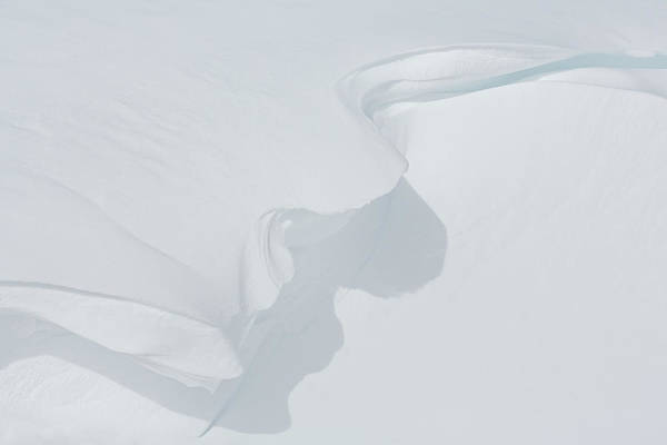Wall Art - Photograph - Delicate Snow Cornice by Ann Skelton