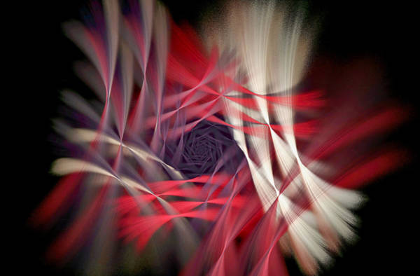 Digital Art - Deluxe Flowerama Red by Don Northup