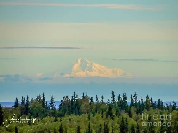 Wall Art - Photograph - Denali Mountain Alaska by Ann Loyd
