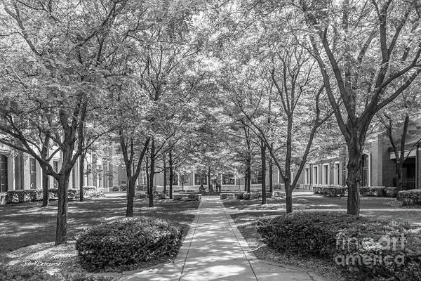 Photograph - Depaul University Richardson Library Courtyard by University Icons