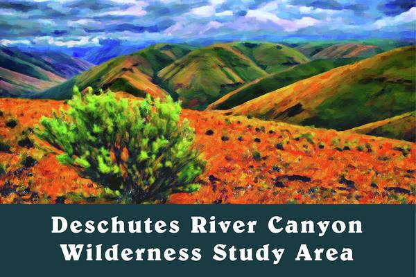 Digital Art - Deschutes River Canyon 1 by Chuck Mountain