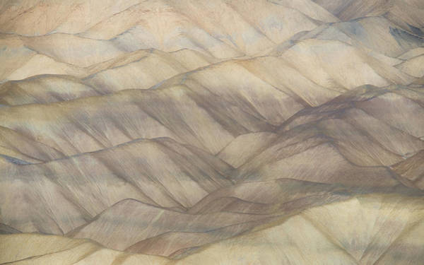 Wall Art - Photograph - Desert Abstract by Joseph Smith