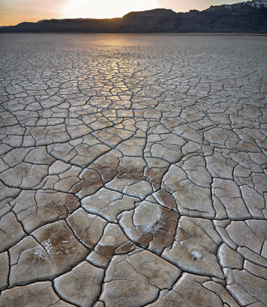 Photograph - Desert Circle by Leland D Howard