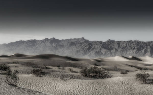 Photograph - Desert Fantasy Panorama by Davin McLaird