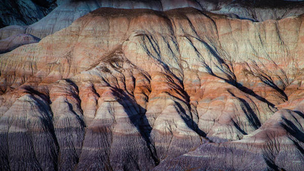 Wall Art - Photograph - Desert  In Abstract by Joseph Smith