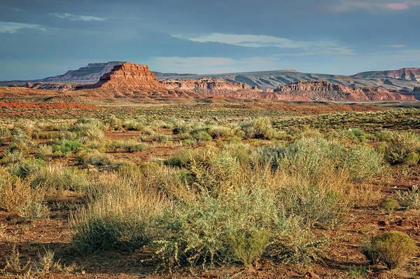 Wall Art - Photograph - Desert Landscape - After The Storm by Nikolyn McDonald