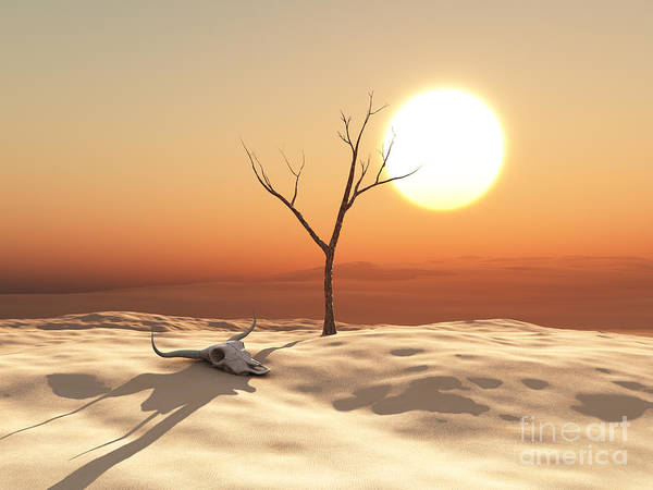 Wall Art - Digital Art - Desert Landscape by Esteban De Armas