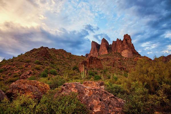 Photograph - Desert Musings by Rick Furmanek