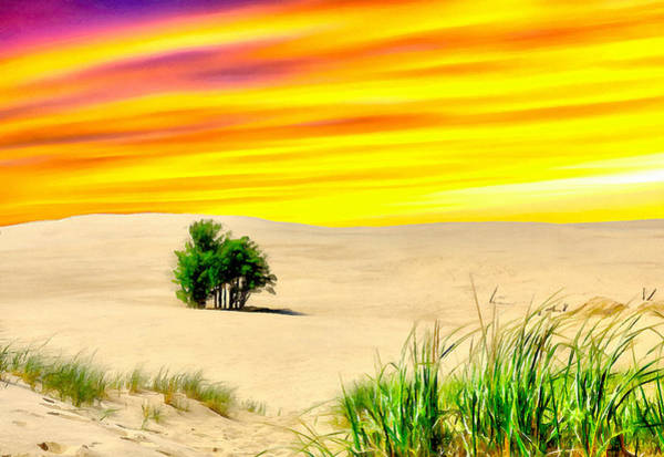 Painting - Desert Oasis Sunset by Dan Sproul