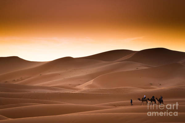 Wall Art - Photograph - Desert Sahara Landscape by Andrzej Kubik