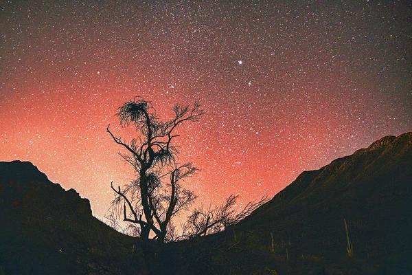 Photograph - Desert Skies By Night by Chance Kafka