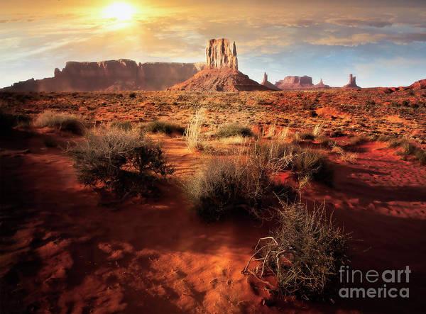 Photograph - Desert Sun by Scott Kemper