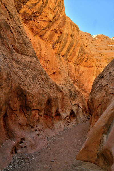 Photograph - Desert Varnish Drapes In Little Wild Horse Canyon by Ray Mathis