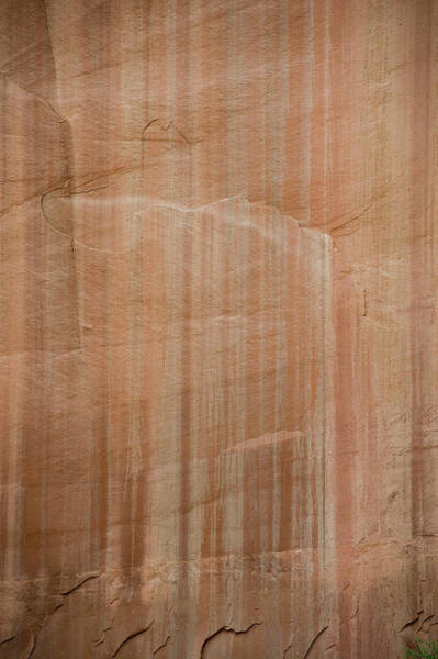 Wall Art - Photograph - Desert Varnish by William Mullins