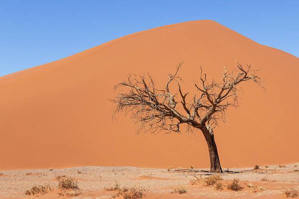 Photograph - Deserted by Dalibor Hanzal