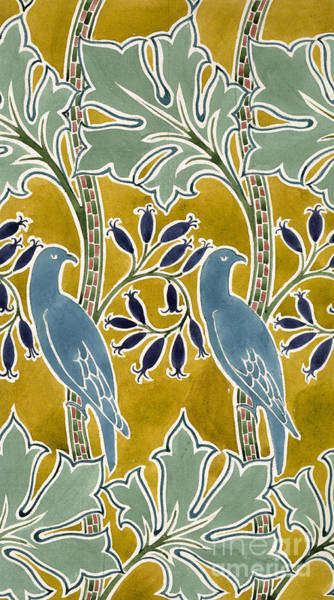 Green Parrot Drawing - Design For 'new Silk Cloth, May 1901  by Charles Francis Annesley Voysey