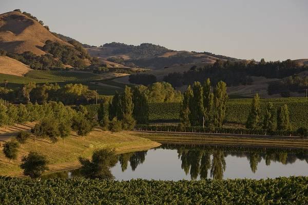 Napa Valley Photograph - Destination Napa Valley Wine Region by George Rose