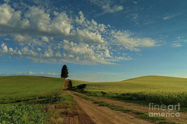 Photograph - Destination - Wide Open Spaces by Beve Brown-Clark Photography