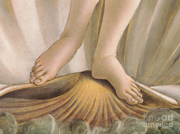 Wall Art - Painting - Detail From The Birth Of Venus Showing Her Feet by Sandro Botticelli