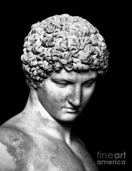 Wall Art - Sculpture - Detail Of Antinous  by Roman School
