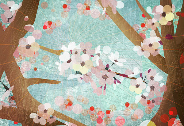 Beauty Of Nature Digital Art - Detail Of Cherry Blossoms by Jutta Kuss