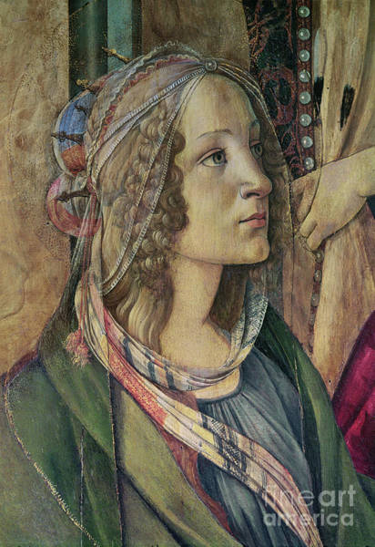 Wall Art - Painting - Detail Of St Catherine From The Altarpiece Of San Barnaba, C1488 Tempera On Panel By Sandro Botticelli by Sandro Botticelli