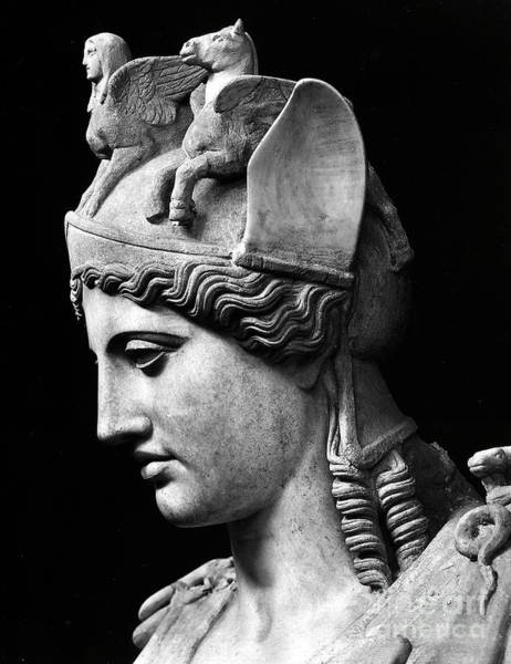 Wall Art - Sculpture - Detail Of The Face Of Athena Farnese by Phidias