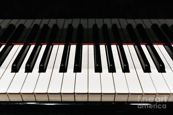 Photograph - Detail Of The Keys Of A Piano. by Joaquin Corbalan