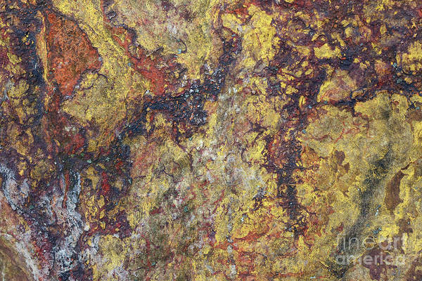 Wall Art - Photograph - Detail Of The Surface Of The Quartz Rock by Michal Boubin