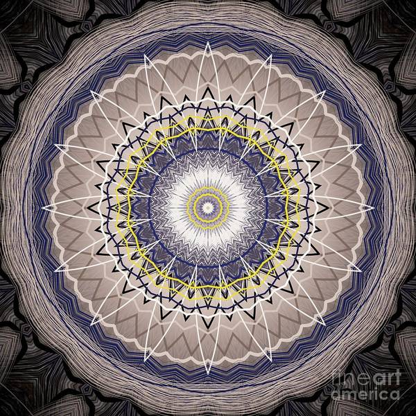 Digital Art - Detailed Bohemian Mandala by Sheila Wenzel
