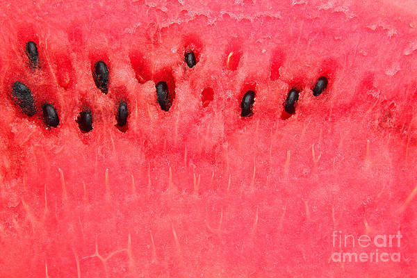 Wall Art - Photograph - Detailed Closeup Of Watermelon by Constantinosz