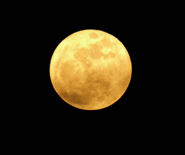 Wall Art - Photograph - Detailed Image Of Yellow Moon On A by Diane Labombarbe