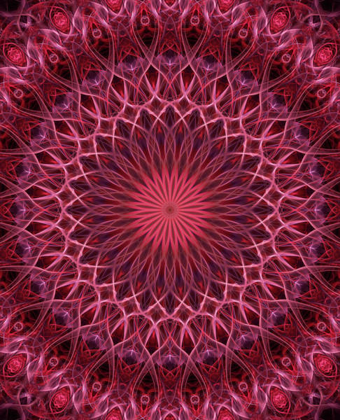 Digital Art - Detailed Mandala In Pink And Red Tones by Jaroslaw Blaminsky