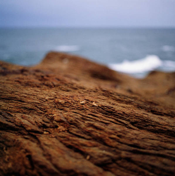Surf City Usa Photograph - Detailed View Of Sandstone At Oceans by Danielle D. Hughson