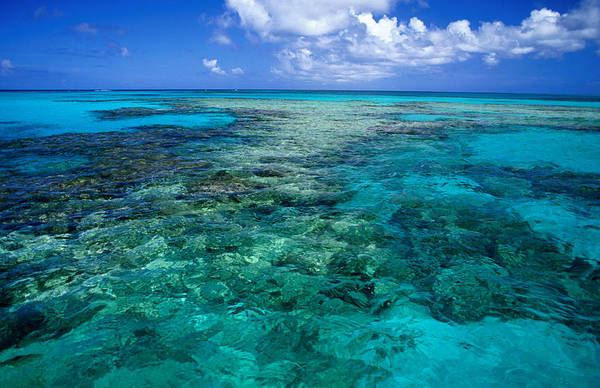 Eleuthera Island Photograph - Devils Backbone, A Ragged Shallow Reef by Michael Lawrence