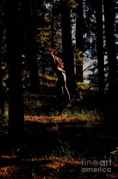 Photograph - Devil's Eye by Robert WK Clark