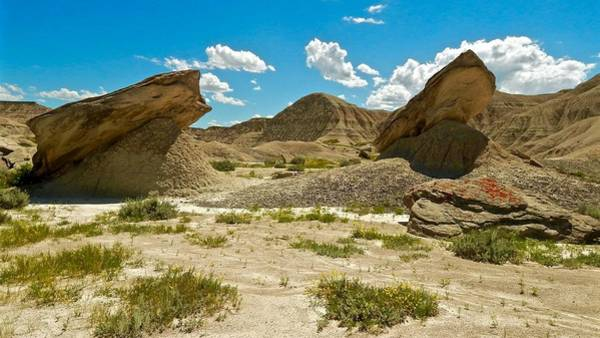 Photograph - Devil's Playground by Dan Miller