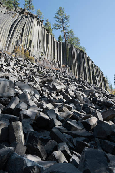 Wall Art - Photograph - Devils Postpile, National Monument by Gerry Reynolds
