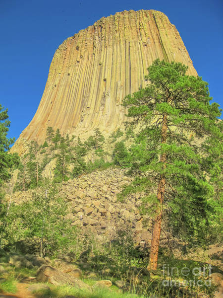 Photograph - Devils Tower National Monument by Benny Marty