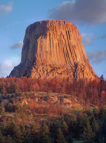 Photograph - Devils Tower Nm, Wyoming by