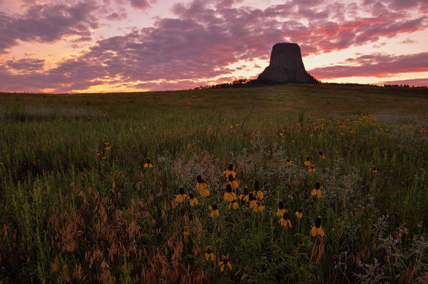 Photograph - Devil's Tower Sunset by Chance Kafka