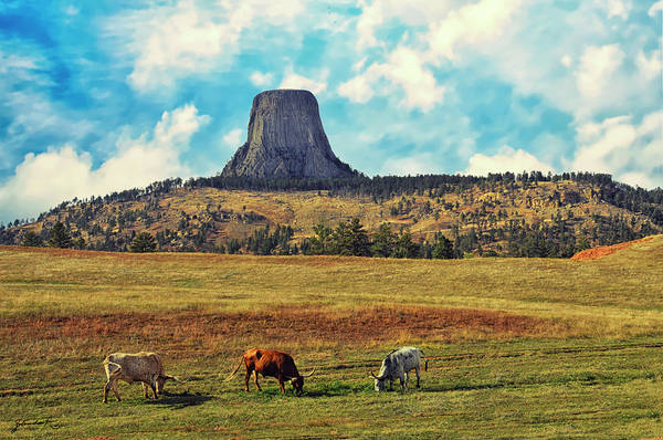 Photograph - Devil's Tower Wyoming by Gerlinde Keating - Galleria GK Keating Associates Inc