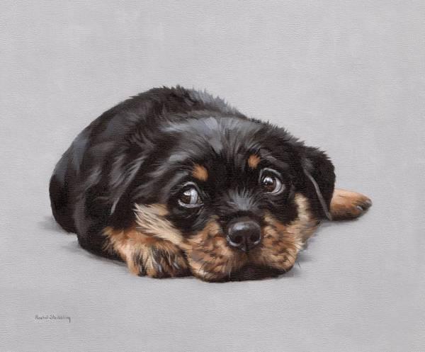 Rottweiler Painting - Dexter by Rachel Stribbling