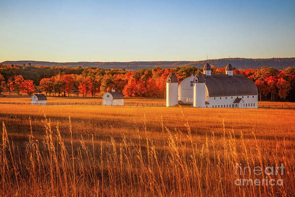 Wall Art - Photograph - Dh Day Barn by Todd Bielby