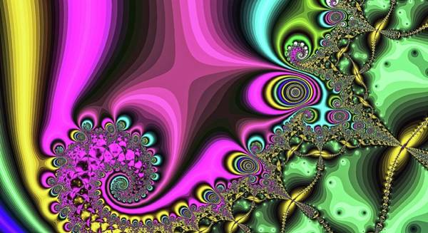 Digital Art - Diamond Tail Spiral Pink by Don Northup