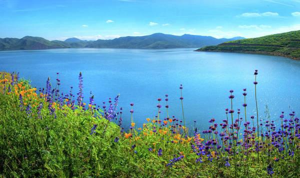 Photograph - Diamond Valley Lake Panorama - Superbloom 2019 by Lynn Bauer