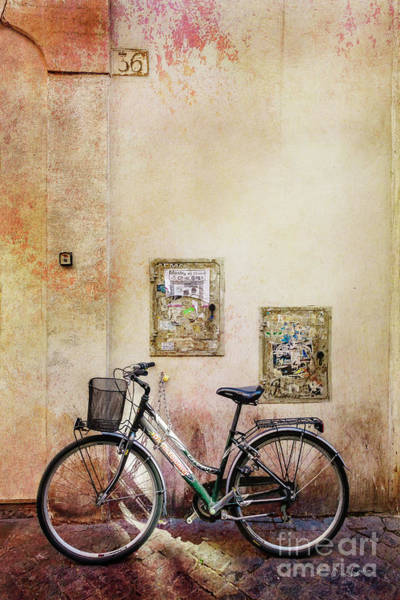 Photograph - Dibartolomei Bicycle by Craig J Satterlee