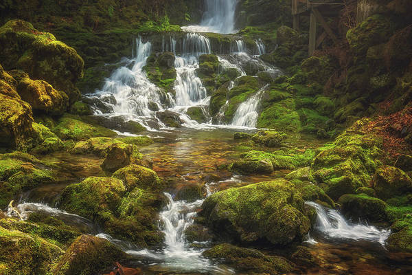 Photograph - Dickson Falls by Tracy Munson