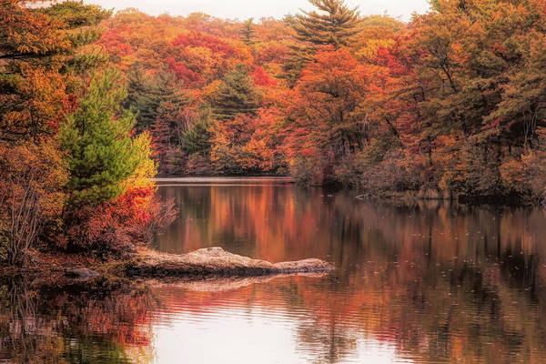 Photograph - Digial Paint Of Birch Pond by Jeff Folger